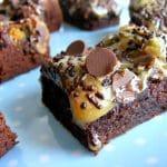 ריבועי שוקולד ועוגיות אוראו עם שוקולד צ'יפס